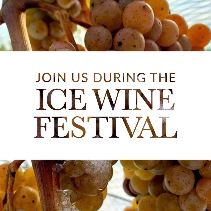 Ice Wine Festival Event Image