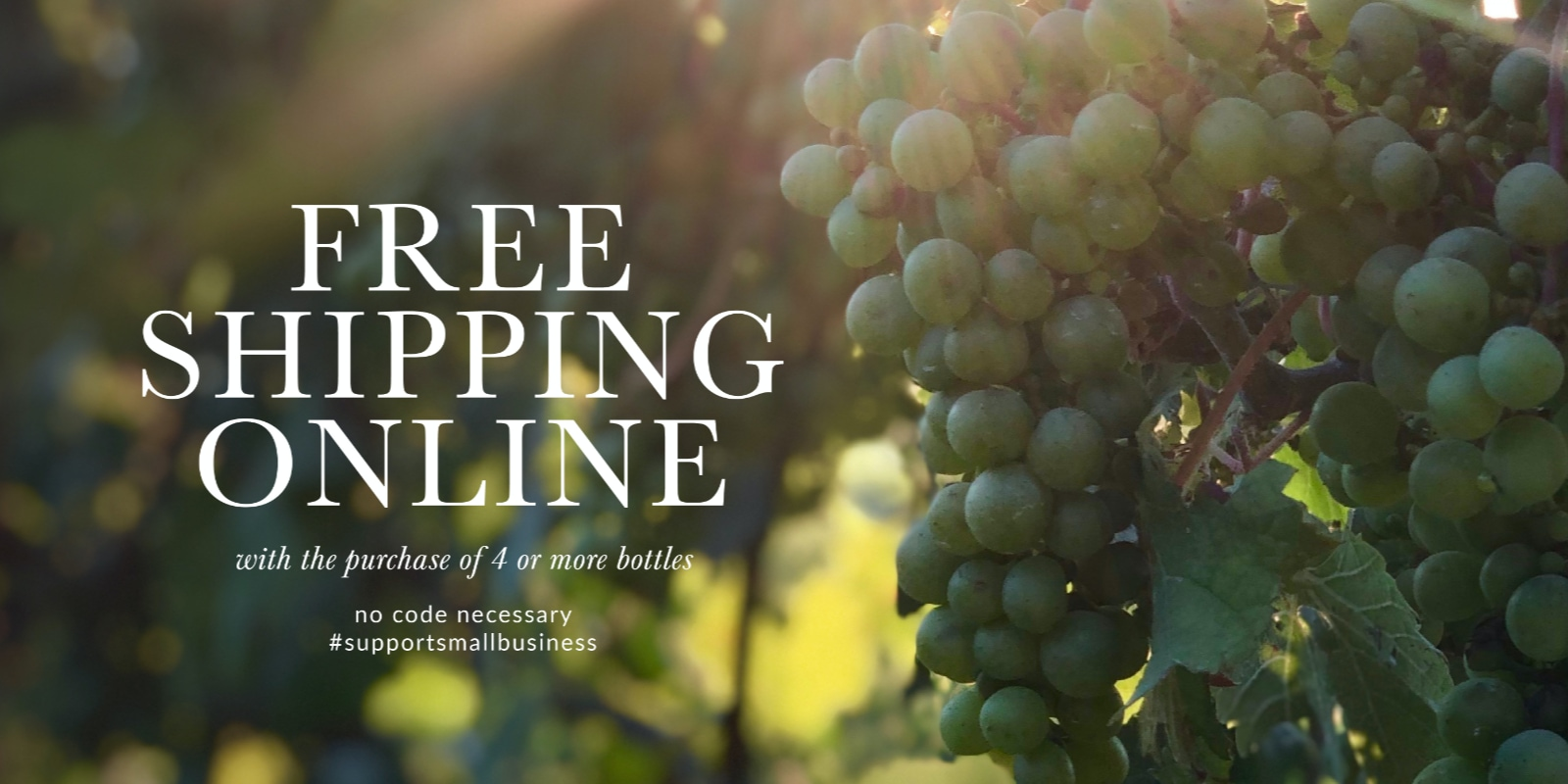 Free Shipping Promo Banner Image