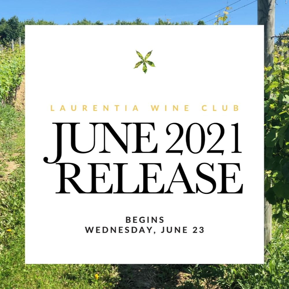 Summer 2021 Release Photo